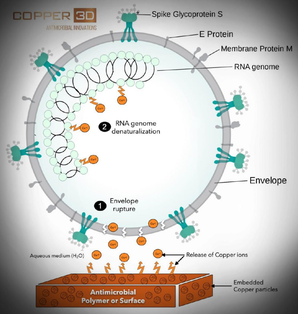 Copper3D - Schematic diagram of the coronavirus. Credit: Binte Altaf. Mechanism of action of Cuprionix® additive